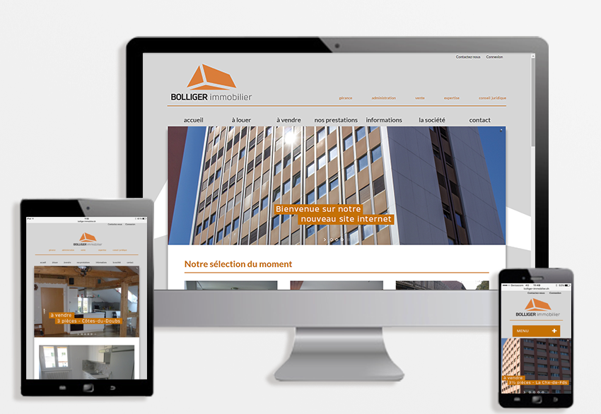 bolliger immobilier site web