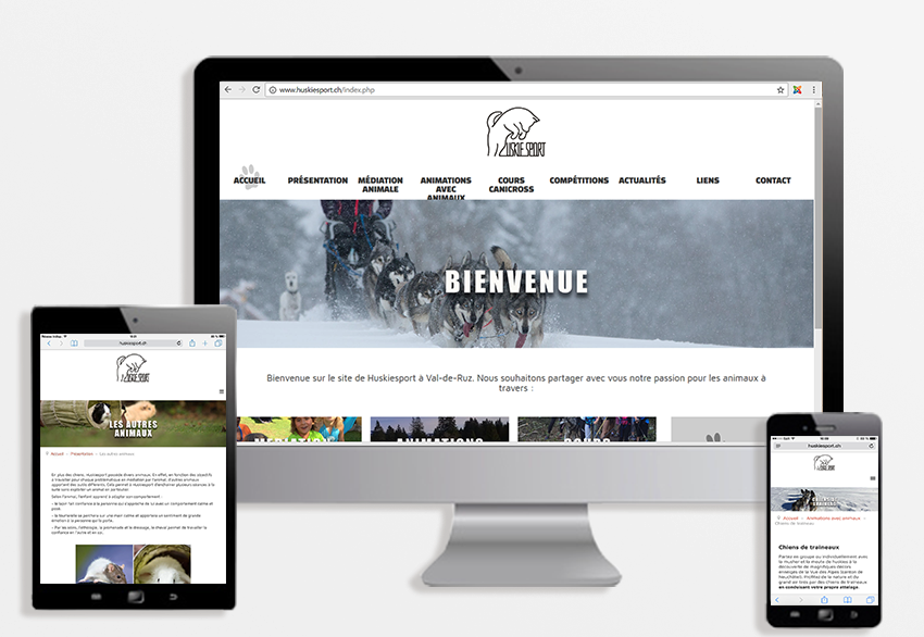 apercu huskiesport site web